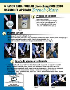 6 Steps to Successful Drenching using the Drench-Mate (Spanish)